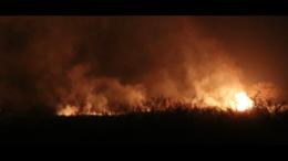 Für Palmölplantagen werden Regenwälder abgefackelt (Filmausschnitt Asimetris) © Watchdoc