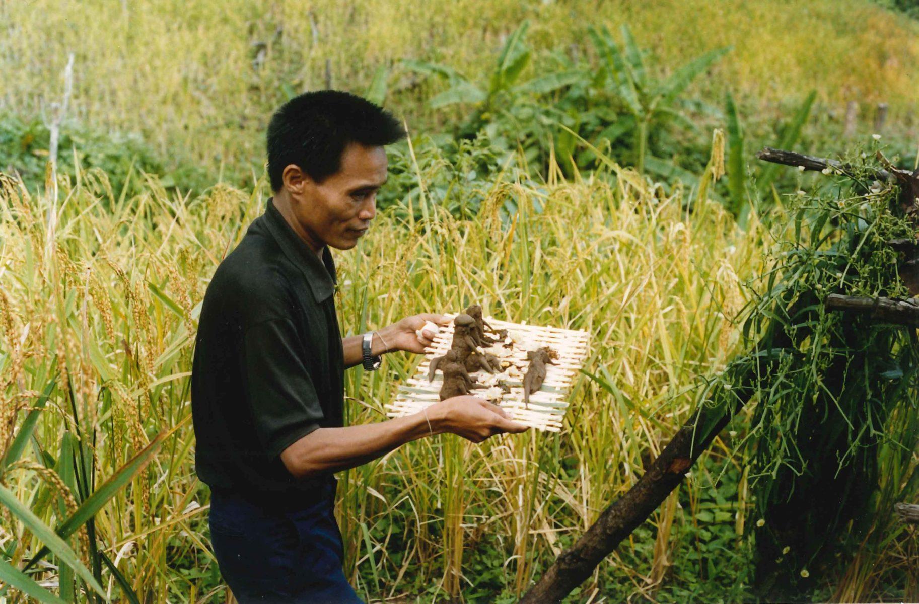 Feldgeister in Laos © Guido Sprenger