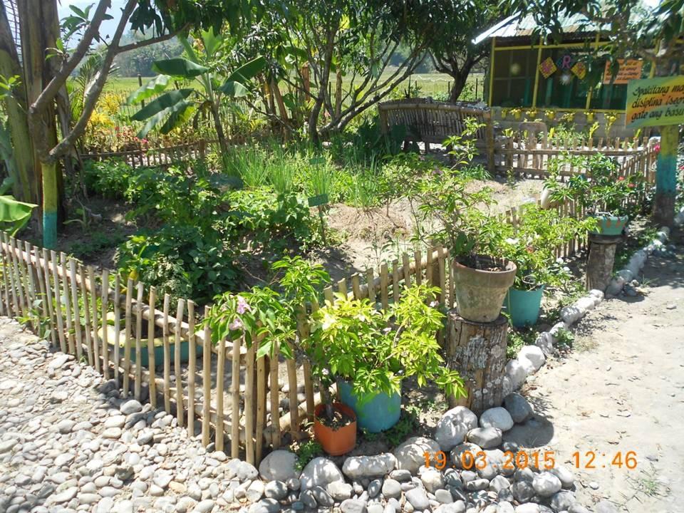 Gedeihender Kräutergarten durch effektiven Kompost © Mother Earth Foundation