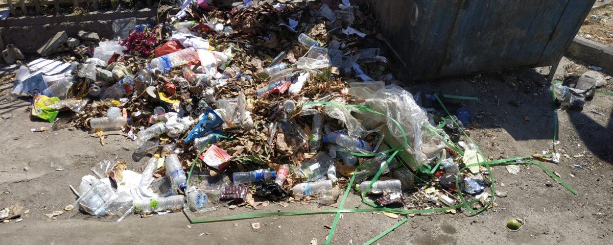 Einweg-Plastik soll verboten werden © Philip Ray