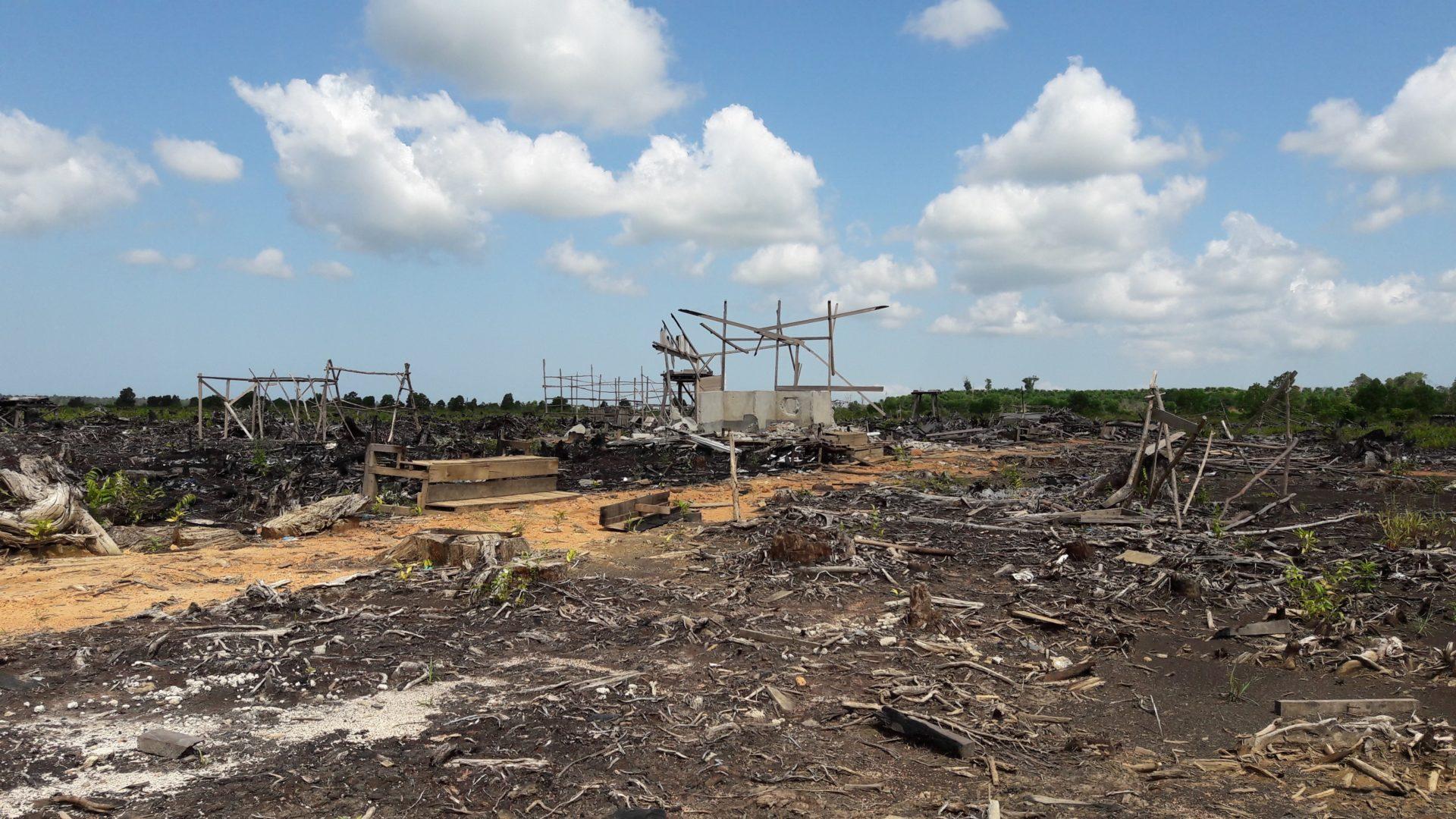 Abgebrannte und verlassene Gafatar-Farm in Mempawah, West-Kalimantan © Andreas Harsono