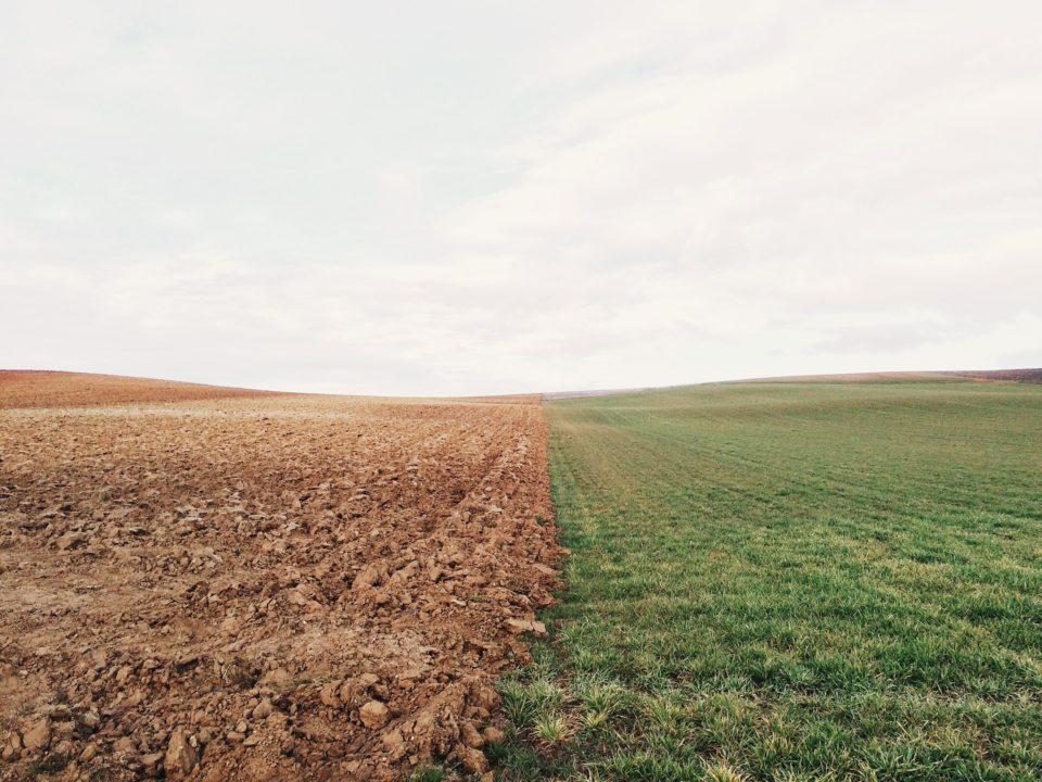 Endlose Felder © privat