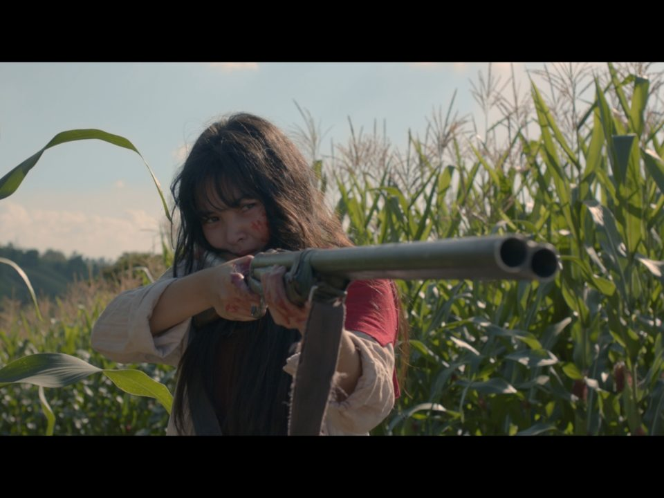Philippinen Rezension Birdshot