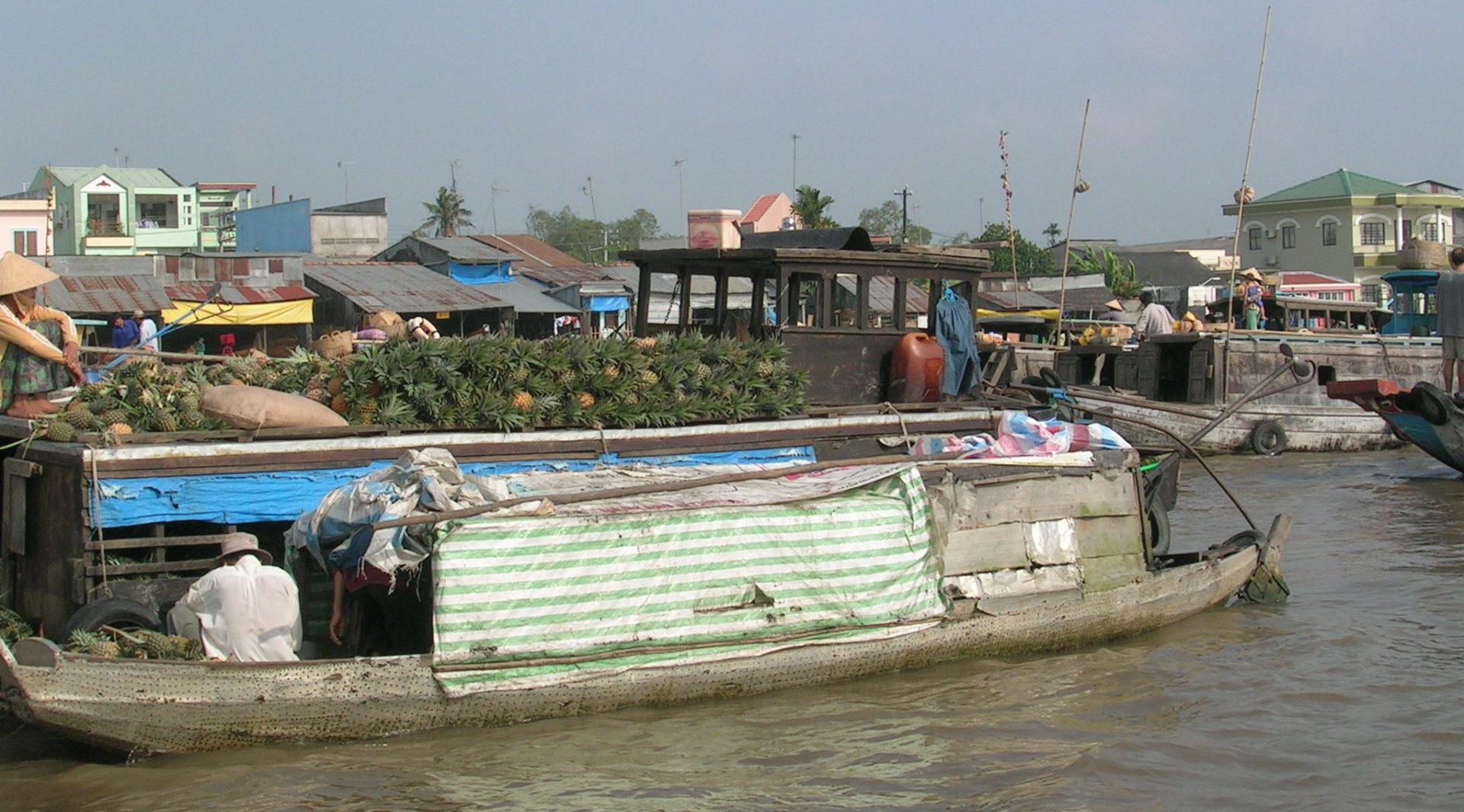 Vietnam versinkendes Mekondelta