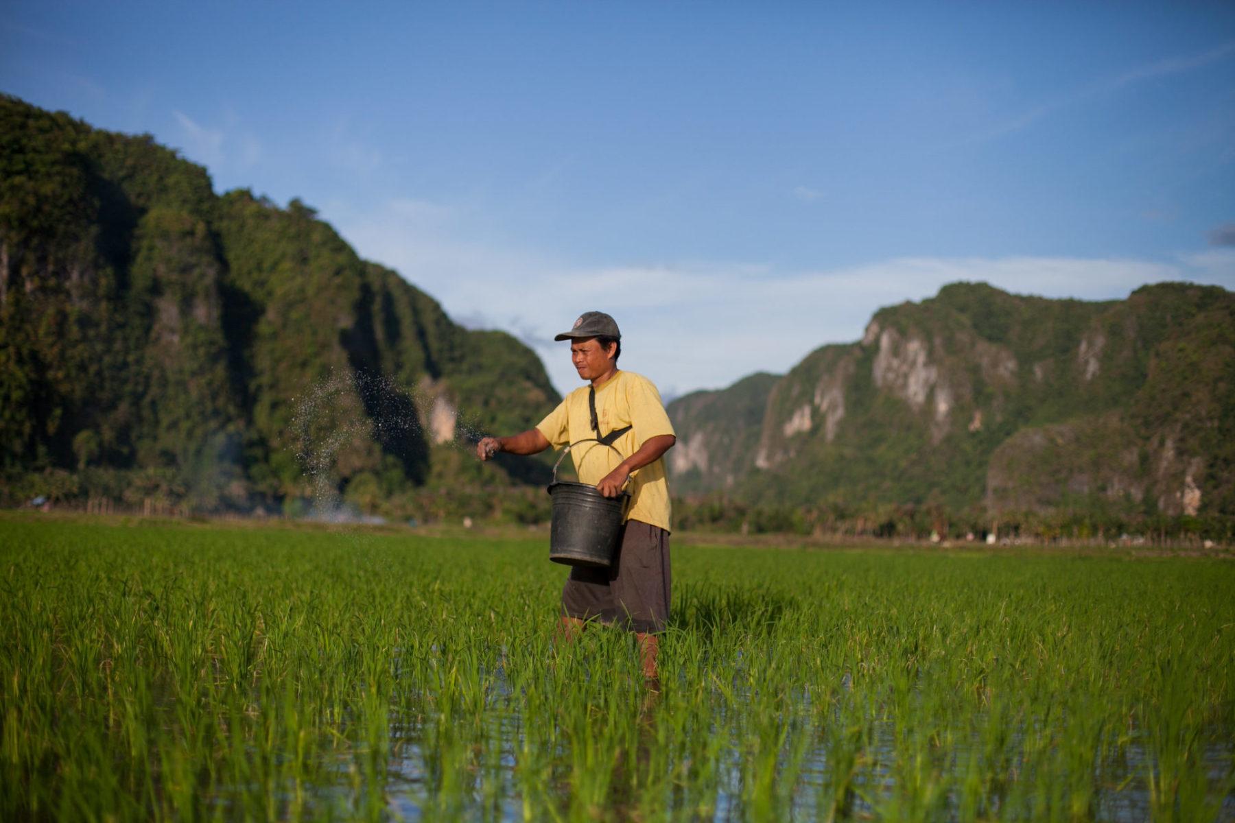 Agro-Nationalismus in Zeiten der Pandemie (Teil I)