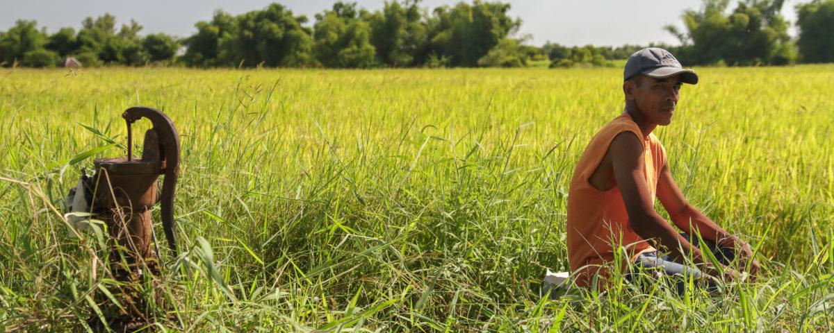 Bioanbau mit Solidarität und Vertrauen