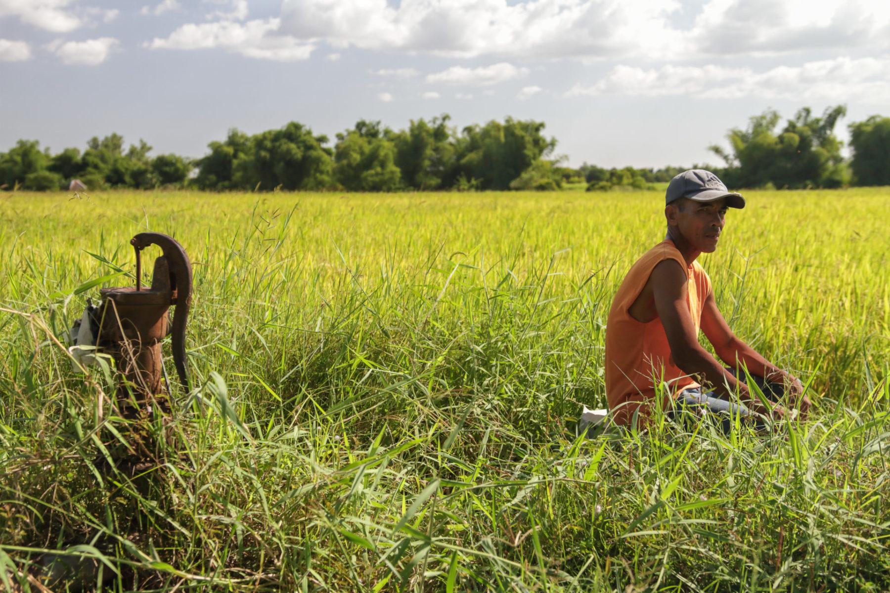 Philippinen Reisanbau Bäuer*innen