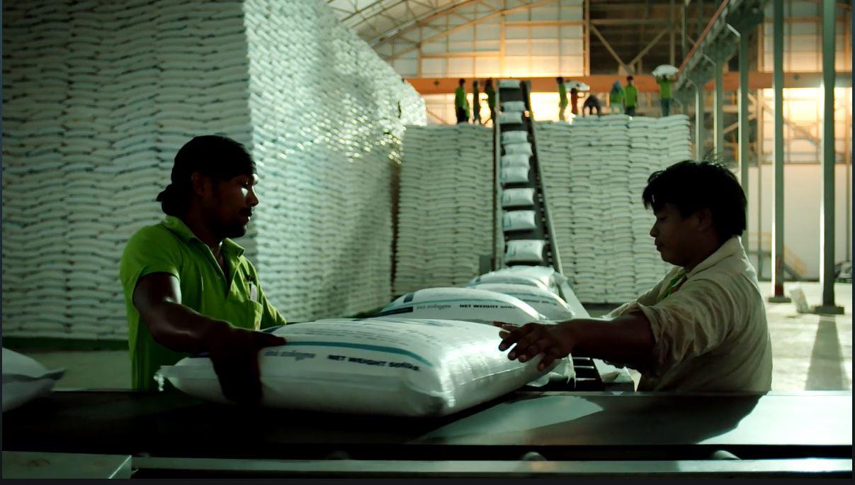 Süßer Zucker, bitteres Herz - Landgrabbing in Südostasien